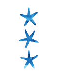 Watercolor Blue Starfish Posters by  Jetty Printables