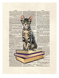 Book Cat Prints by Matt Dinniman