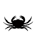 Black Crab Posters by  Jetty Printables
