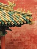 Roof Decoration on Building in Forbidden City Metalltrykk av Bruno Ehrs