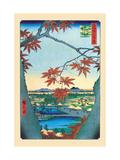 The Maple Trees Reproduction sur métal par Ando Hiroshige
