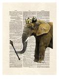Elephant King Print by Matt Dinniman