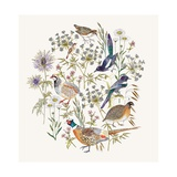 Woodland Edge Birds Placement Giclee Print by Jacqueline Colley
