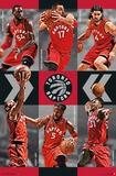 Toronto Raptors - Team 2015 Posters