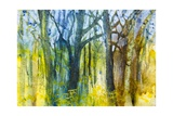 Margaret's Forest Giclee Print by Margaret Coxall