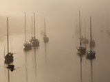 Sailboats on their Harbor Moorings, in Early Morning Fog Metal Print by Nigel Hicks