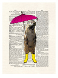Rainy Day Otter Prints by Matt Dinniman