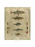 Pisces Composition I Metal Print