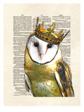 Owl King Print by Matt Dinniman