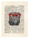 Smarty Owl Prints by Matt Dinniman