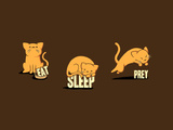 Eat, Sleep, Prey - Cute Cats Poster by  Boots