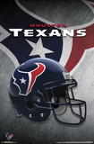 Houston Texans - Helmet 2015 Fotografia