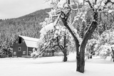 Fresh Snow on Red Barn Near Salmo, British Columbia, Canada Photographic Print by Chuck Haney