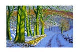 Green Trees, Winter, Dam Lane, Derbyshire Giclee Print by Andrew Macara