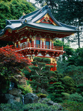 Japanese Tea Garden, San Francisco, CA Metal Print by Daniel McGarrah