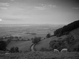 Coaley Peak, Dursley, Cotswolds, England Fotografisk tryk af Peter Adams