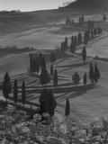 Winding Road and Poppies, Montichiello, Tuscany, Italy, Europe Fotografisk trykk av Angelo Cavalli