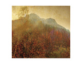 Autumn Colors 2 Print by Carlos Casamayor