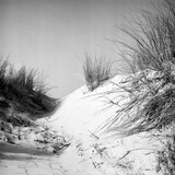 Baltrum Beach, no. 10 Photographic Print by Katrin Adam