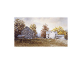 Autumn Roost Prints by Ray Hendershot