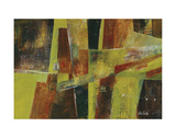 594 Prints by Lisa Fertig