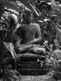 Bali, Ubud, a Statue of buddha Sits Serenely in Gardens Fotodruck von Niels Van Gijn