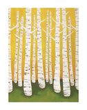Autumn Birches Posters por Lisa Congdon