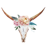 Bull Skull Watercolor Poster by  Zenina