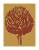 Artichoke 15 Prints by  Botanical Series