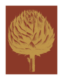Artichoke 16 Posters by  Botanical Series