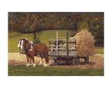 Amish Harvest Kunstdrucke von Kathleen Green