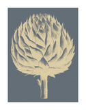 Artichoke 2 Prints by  Botanical Series