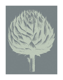 Artichoke 7 Prints by  Botanical Series