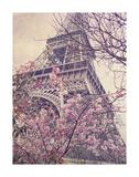 April in Paris Prints by Dawne Polis