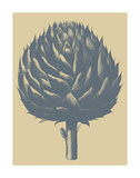 Artichoke 1 Art by  Botanical Series