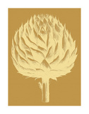 Artichoke 20 Posters by  Botanical Series