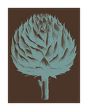 Artichoke 6 Posters by  Botanical Series
