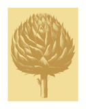Artichoke 19 Posters by  Botanical Series