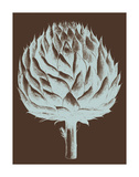 Artichoke 17 Prints by  Botanical Series