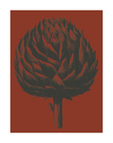 Artichoke 9 Prints by  Botanical Series