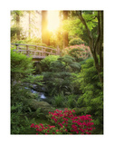 Awakening Garden II Posters by Dennis Frates