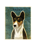 Basenji (Tri-Color) Posters by John W. Golden