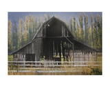 Barn and Poplars Poster by David Lorenz Winston