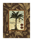 Banana Palm (Brown) Print by Karl Rattner