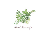 Basil Rosemary Art by Lucile Prache