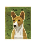 Basenji (Red) Prints by John W. Golden