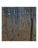 Beech Grove I, 1902 Kunstdruck von Gustav Klimt