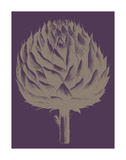 Artichoke 13 Posters by  Botanical Series