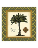 Banana Palm (Green) Prints by Karl Rattner