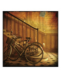 Bikes in Paris, France Prints by Dawne Polis